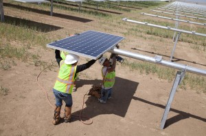 Workers install high efficiency SunPower panels at the 579-MW Antelope Valley Solar Projects